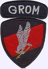 """GROM-plakietka. JW GROM(full name:Jednostka Wojskowa GROM im. Cichociemnych Spadochroniarzy Armii Krajowej, """"Military Unit GROM named in honour of theSilent Unseenof theHome Army"""") isPoland's elite counter-terrorism unit. GROM, which stands forGrupa Reagowania Operacyjno-Manewrowego(English:Operational Maneuver Response Group), but also means """"thunder"""", is one of thefive special operation forcesunits of thePolish Armed Forces. It was officially activated on July 13"""