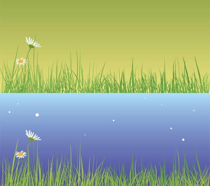 Water, grass, flowers