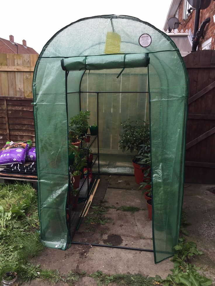 Love my new walk in greenhouse! Any tips? #gardening #garden #DIY #home #flowers #roses #nature #landscaping #horticulture