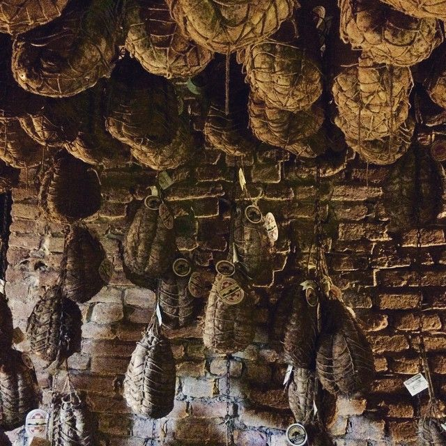 Culatello is the king of cured pork and salami and this humid cellar at Antica Corte Pallavicina in Parma, Italy contains about 5000 of the precious local product, the most prized of which is made from black pigs.