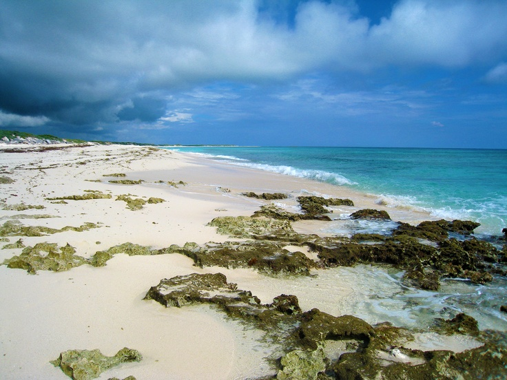 Cozumel, Mexico. Amazing deserted beaches and crystal clear water.