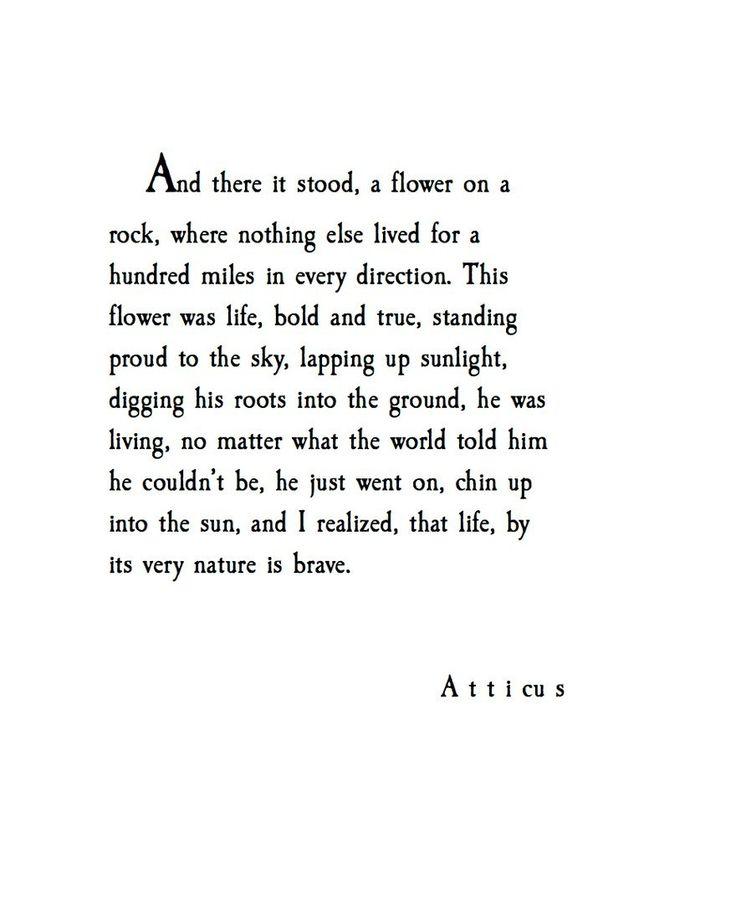 'This Was Life' @atticuspoetry #atticuspoetry