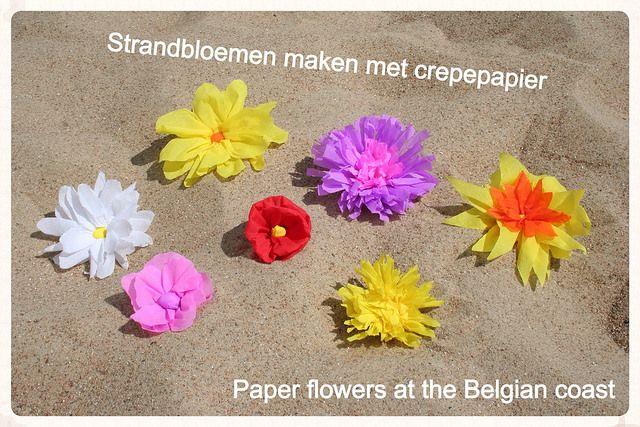 Strandbloemen by Laloe.be