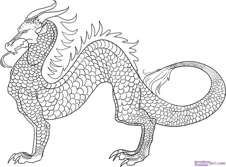 japanese dragon coloring pages - photo#6