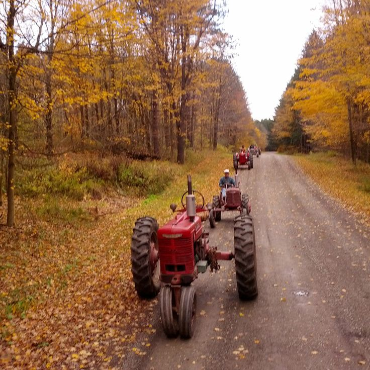 Do you think Tractors in Autumn deserves to win the Steiner Tractor Parts Photo Contest?  Have your say and vote today for your favorite antique tractor photos!