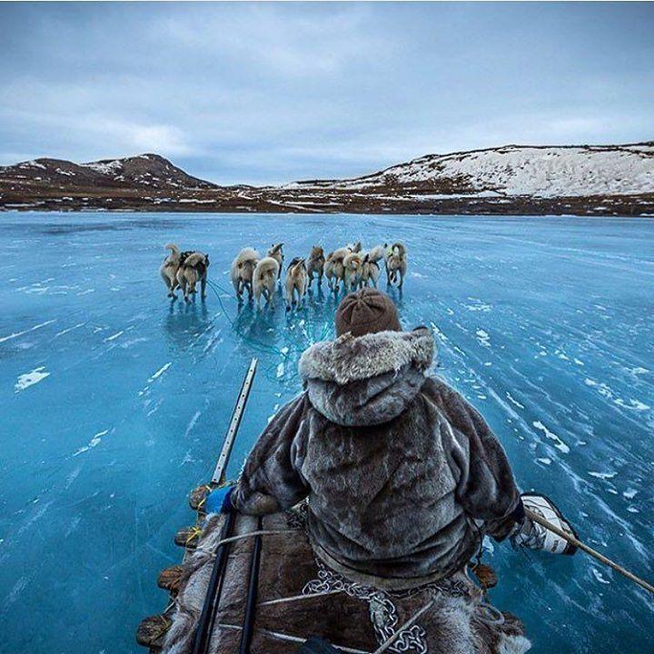 Dog sledding in Greenland. Photo - Joe Capra. Also Follow @thebeautyofthailand. #OurLonelyPlanet #DogSledding #Greenland Hotels-live.com via https://www.instagram.com/p/_JJnLuxtDQ/