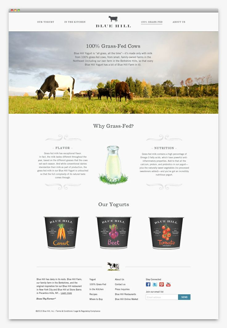 Blue Hill Yogurt website design by Apartment One