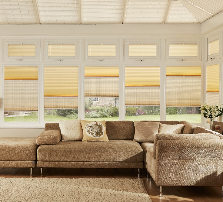 Day and Night Pleated Blinds