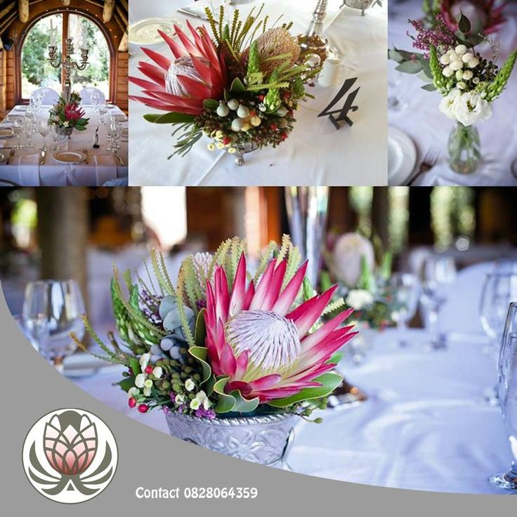 Proteas can be used for a lot more than weddings. They are perfect for any kind of decorations at functions! Contact us and give us your specifications, we will arrange just what you need. #flowers #networking #events