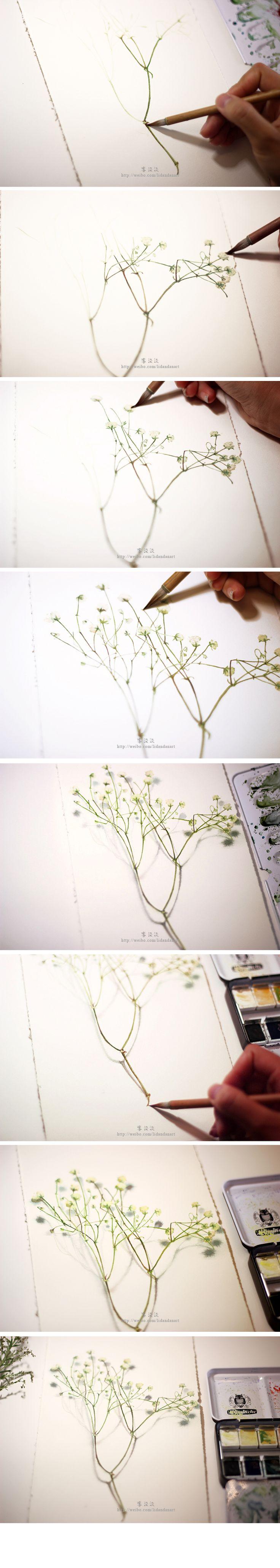 之前画的一些植物,再分享一下常用的画具~♡_涂鸦王国 原创绘画平台 www.poocg.com