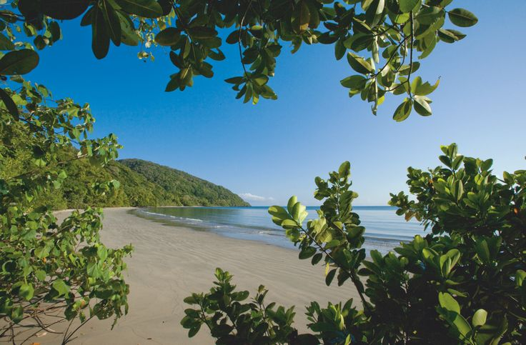 A beach in Cape Tribulation...where else?