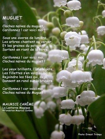 joyeux_1er_mai_Muguet_20Maurice_20Careme_206401