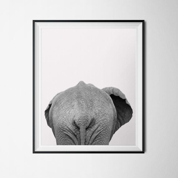 Elephant print safari animal poster instant download black and white photography 16 x 20 poster animal printable art elephant rear