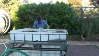 An aquaponic system combines hydroponic gardening with aquaculture fish farming using one system to filter and nourish one another. It's ingenious. This link has a good 30 minute tutorial in it.