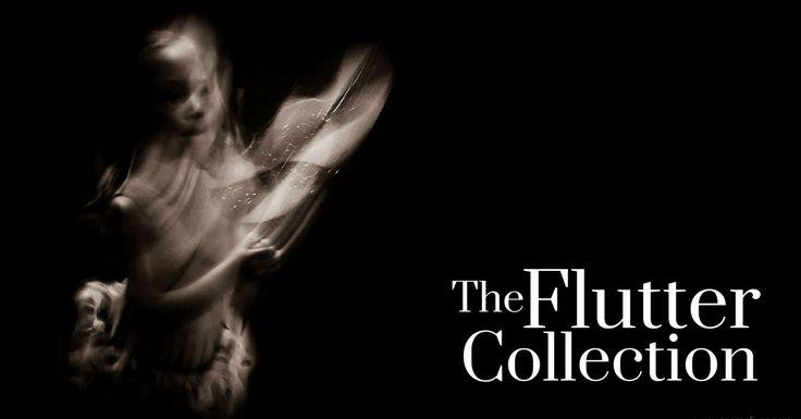 Flutter Archives – George Fivaz Fine Art Photography