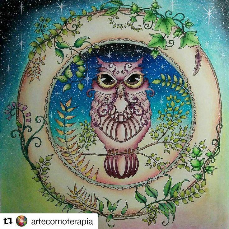 Owl Enchanted Forest By Katarina Katka