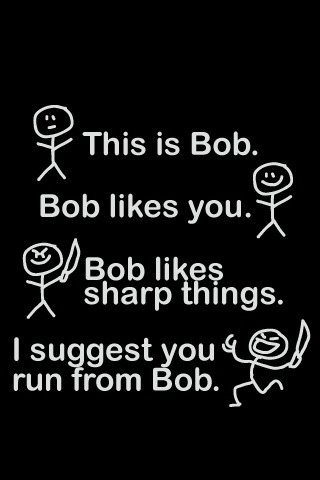 Meet Bob.