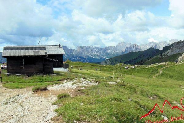 Sentiero Attrezzato Lino Pederiva - Dal Ciampac di Alba di Canazei (Val di Fassa) alla Val Contrin, passando dal Sentiero Attrezzato Lino Pederiva che sovrasta la Val San Nicolò