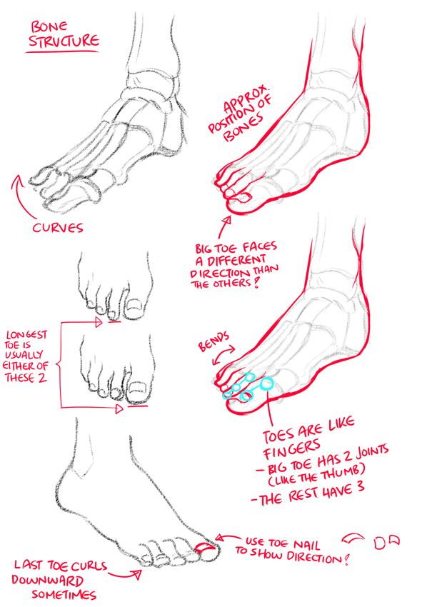 A place to learn how to draw, kurisu004:     How to draw feet