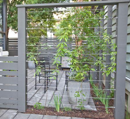Shapiro's Garden: wire trellis-screen