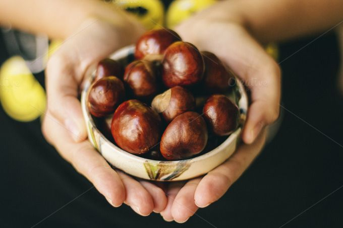 Check out Chestnut by Pixelglow Images on Creative Market