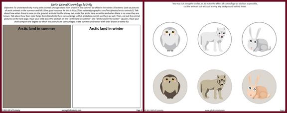39 best images about arctic unit study on pinterest penguins student and informational writing. Black Bedroom Furniture Sets. Home Design Ideas