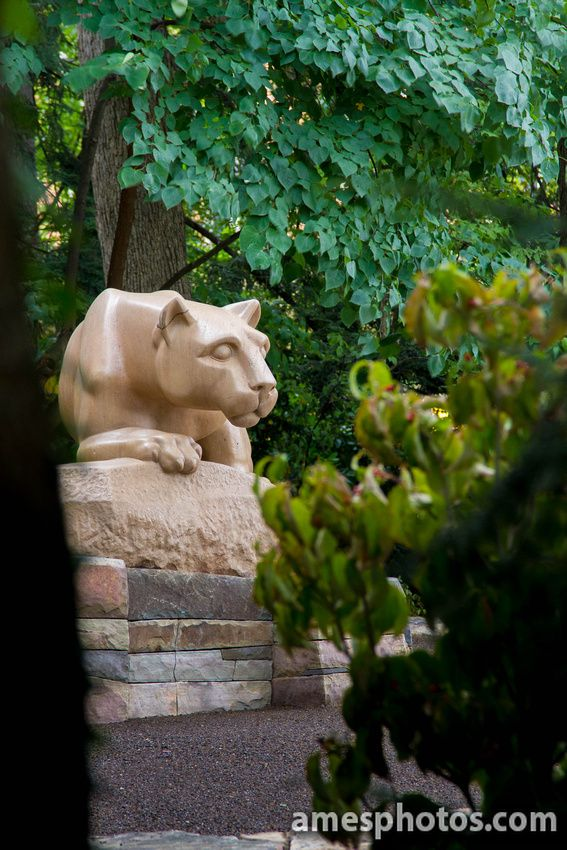 10 Best Images About Penn State On Pinterest Four