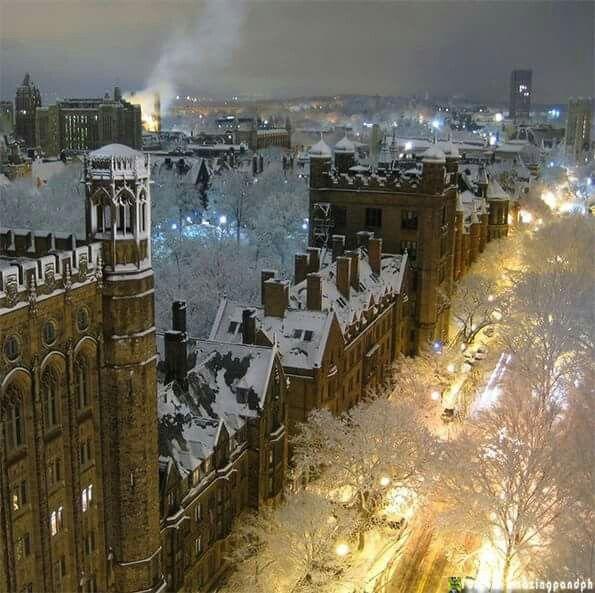 Yale University, New Haven, CN