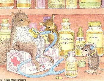 """Amanda, Muzzy and a friend featured on The Daily Squeek® for July 26th, 2014. Click on the image to see it on a bunch of really """"Mice"""" products."""