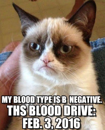 Grumpy cat donates blood; you should, too. - Grumpy cat meme (http://www.memegen.com/meme/b3z2wf)