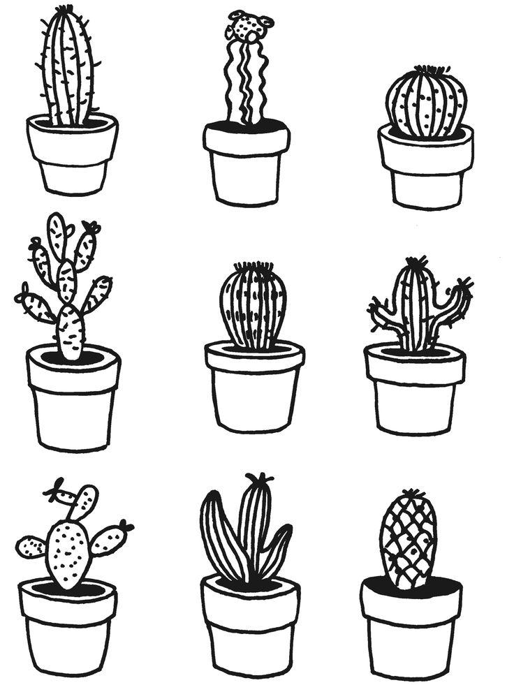 cacti doodle