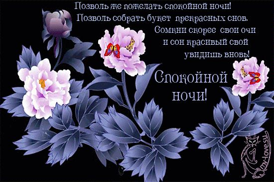 Цветы и стих! Гиф с пожеланием спокойной ночи, пожелания ...