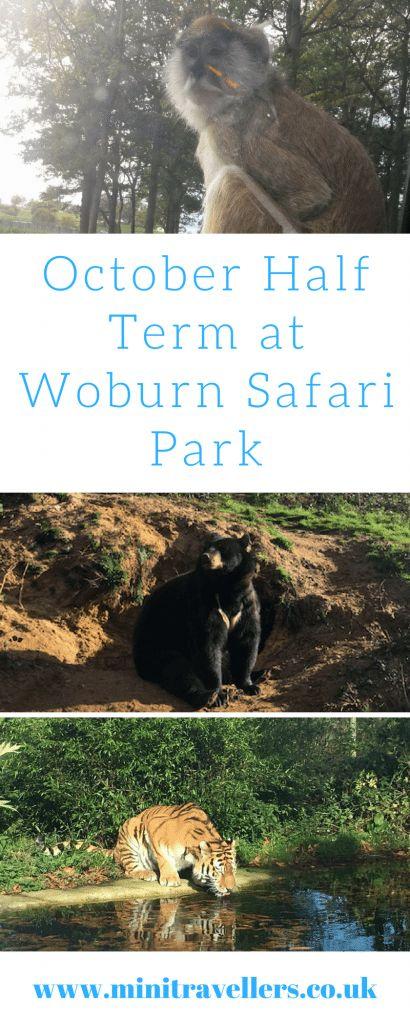 October Half Term at Woburn Safari Park http://minitravellers.co.uk/october-half-term-woburn-safari-park/