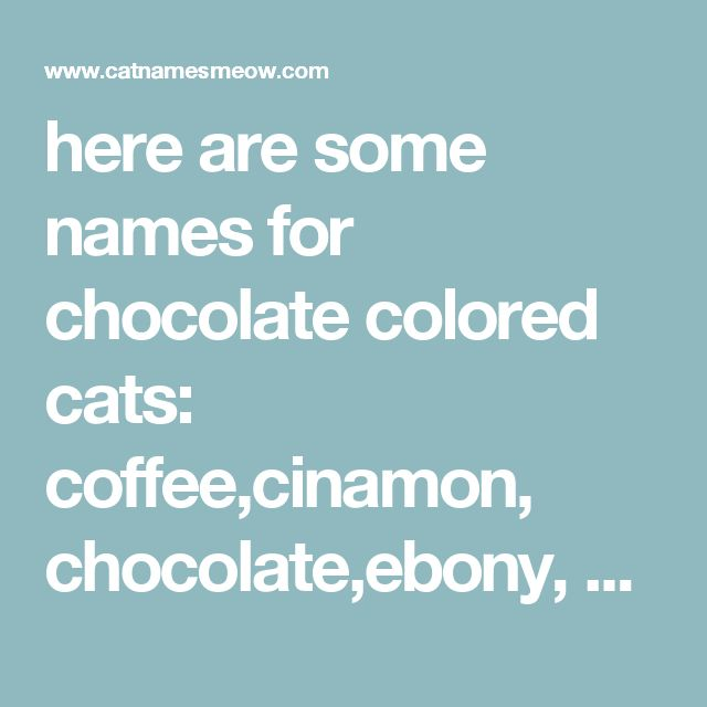 here are some names for chocolate colored cats: coffee,cinamon, chocolate,ebony, ko-ko, marmite,truffles, - cat name rating, history and meaning | Cat Names Meow