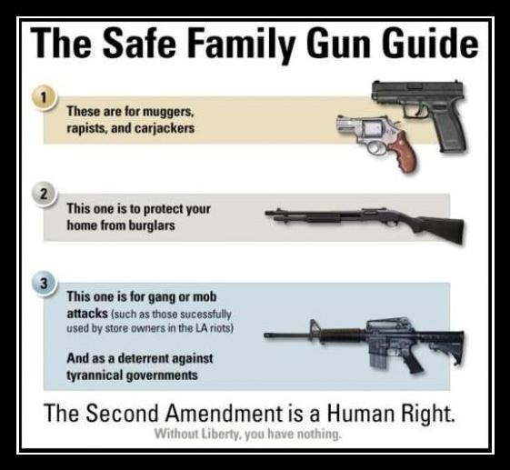 """a study of our right to bear arms Tenth amendment center keep and bear arms is a natural right, not a """"constitutional right the states can just violate our right to keep and bear arms."""