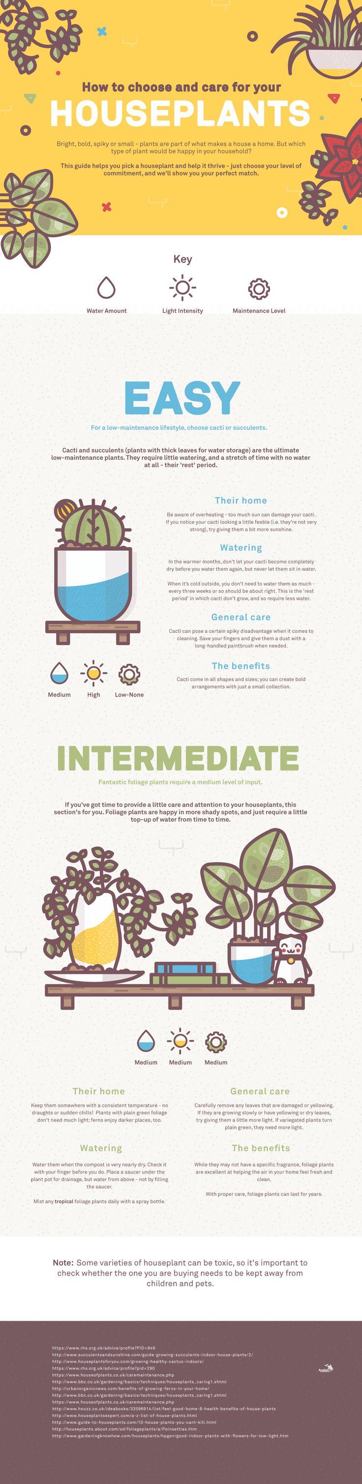 Infographic Illustration | Lucas Jubb Design & Illustration