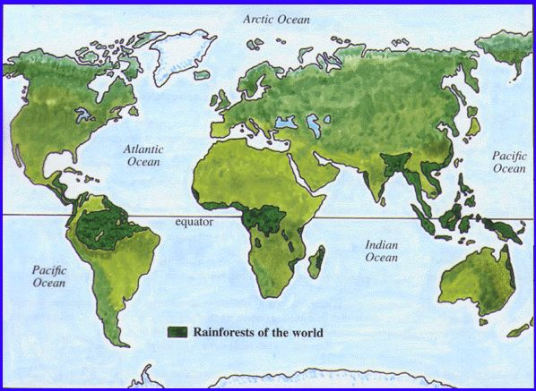 The dark green areas are where the Rainforests are located