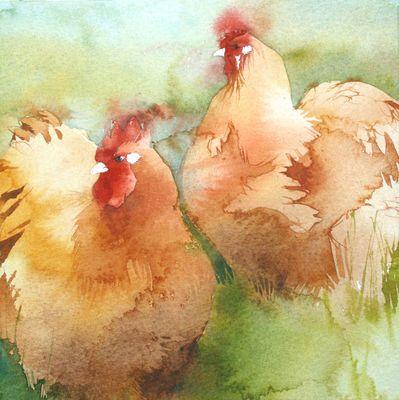 Beautiful watercolor of Buff Orpingtons by Kate Osborne:  KO.38 orpingtons