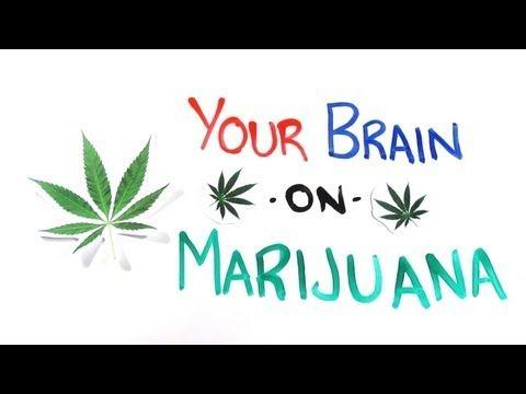 your brain on marijuana