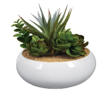 Artificial Potted Cactus 4
