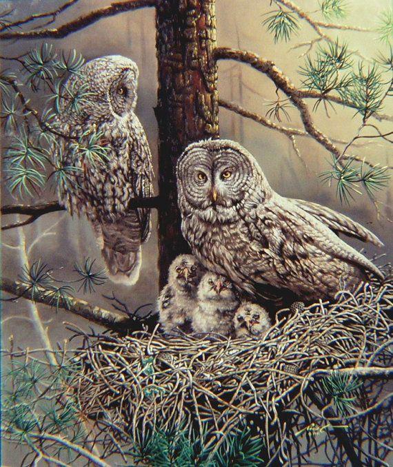 Gray Owls, nest, wildlife bird, original 48x40 oils on canvas painting by RUSTY RUST / O-11