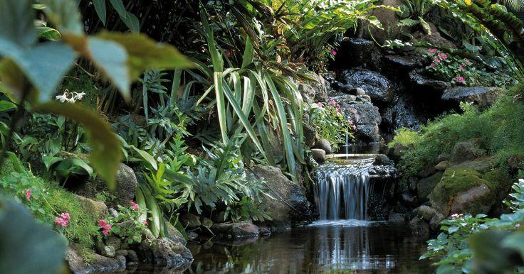 Cómo colaborar para preservar un bioma. Un bioma es un ecosistema natural que abarca un amplio territorio. Existen cinco tipos de biomas en la tierra: acuáticos, desiertos, bosques, praderas y tundra. Cada bioma es compatible con una cadena específica de organismos interdependientes. Cada una de ellas se encuentran amenazada por los seres humanos de diferentes maneras. Los biomas más ...