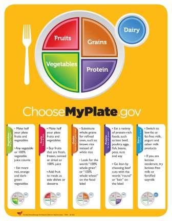 Detailed MyPlate | Teaching: Healthy Living | Pinterest ...