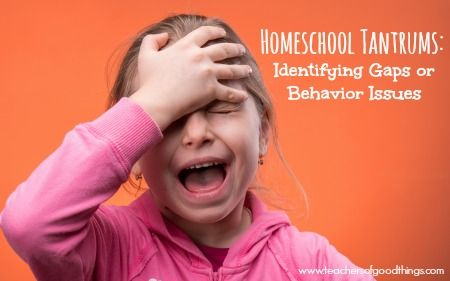 Does your child cry a lot during lessons? Or have fits at the mention of homeschool? These tips will help you identify the issue. Homeschool Tantrums: Identifying Gaps or Behavior Issues | www.teachersofgoodthings.com