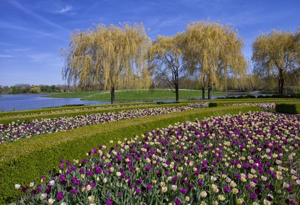 Spring At Chicago Botanic Garden Botanical Gardens Pinterest