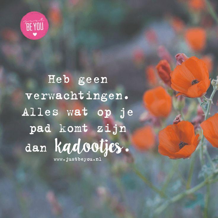 Heb geen verwachtingen. Alles wat op je pad komt zijn dan kadootjes.  // quote nederlands // spreuk // jezelf // positief