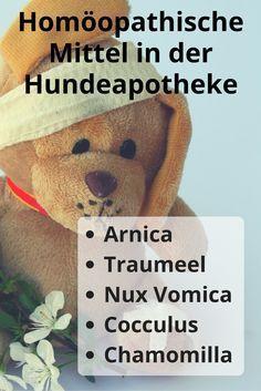 Liste homöopathischer Mittel die in keiner Hundeapotheke fehlen sollten…