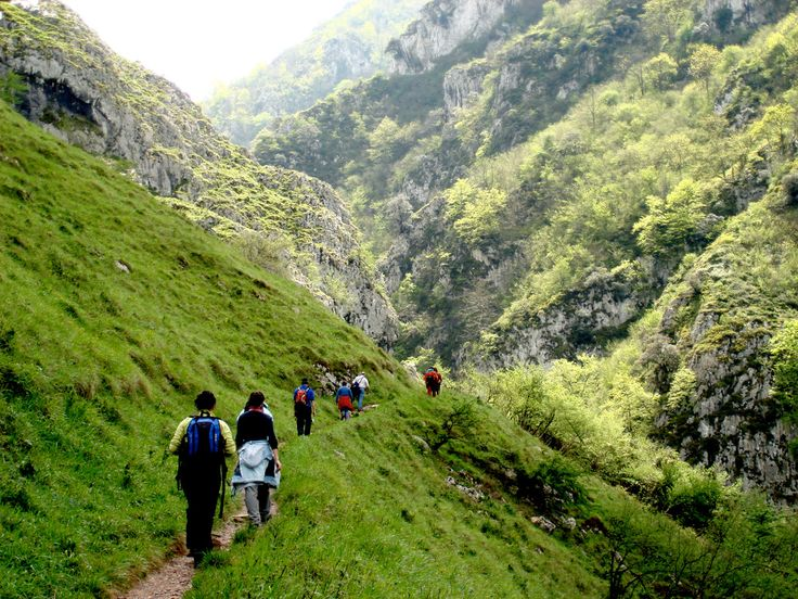 Rutas con niños: Senda del Oso (Asturias)