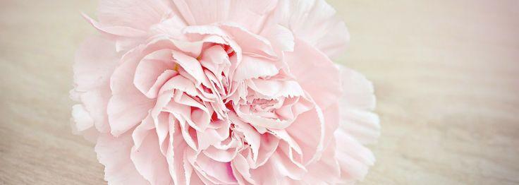 Kwiaty z materiału - Przepis Na Szycie