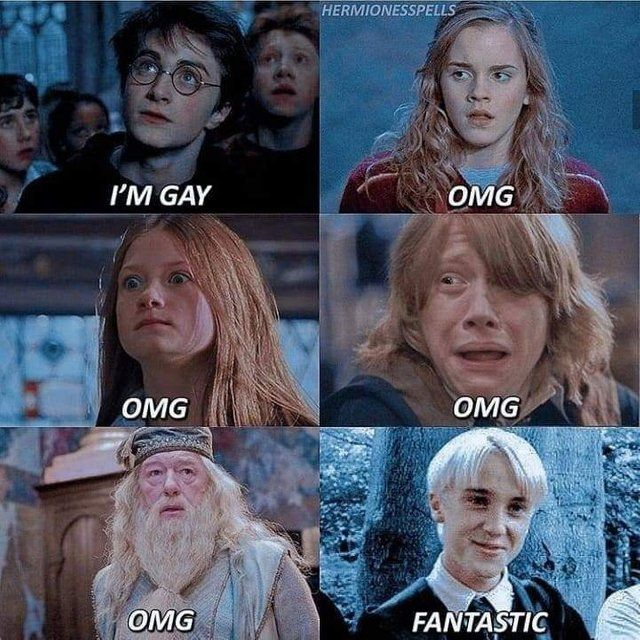 Pin On Harry Potter Humor